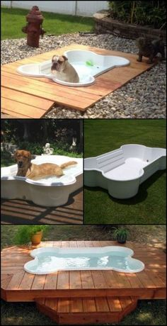 dog rooms in house ; dog rooms under the stairs ; dog rooms in house bedrooms ; dog rooms in house small spaces ; dog rooms in garage ; dog rooms in bedroom Dog Backyard, Backyard Landscaping, Landscaping Ideas, Backyard Ideas, Garden Ideas For Dogs, Pool Ideas, Canis, Puppy Room, Dog Spaces