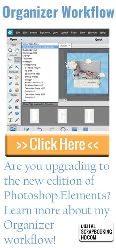 Are you upgrading to the new edition of Photoshop Elements? Sonja has some questions about the Organizer workflow and I thought I'd answer them today.