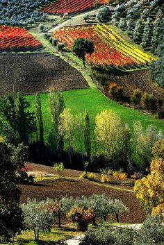 Umbria #Italy