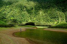 Grand Etang - Reunion Island