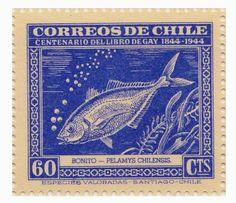 Filatelia Peces: Chile, Los peces en los sellos chilenos