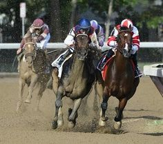 Songbird (rail) and Carina Mia round the turn onto the final stretch where they battle it out. Songbird wins the Coaching Club American Oaks.