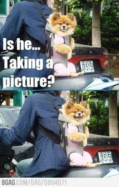 Is he.. taking a picture?
