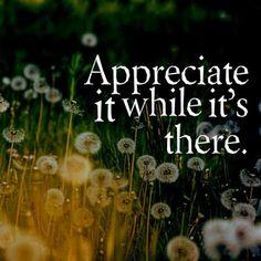 Appreciate it while it's there ...