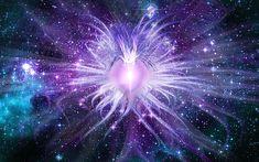 Spiritual Awakening Signs And Symptoms - Ascension Signs Are you experiencing Spiritual Awakening Signs? Discover the most common spiritual awakening symptoms and why they are a good thing! Evolution, Les Fables, Spiritual Meaning, Spiritual Music, Spiritual Health, Spiritual Growth, Astral Projection, Spiritual Awakening, Healer