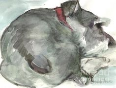 watercolor paintings of schnauzers | Cooper's Morning Painting by Brande Arno - Cooper's Morning Fine Art ...