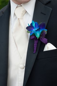 peacock theme Boutienerre this is what the boys will be wearing for kyle and I's wedding =)