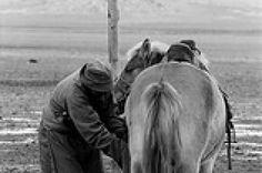 servizi fotografici vintage in pellicola e camera oscura #fotografia #vintage #pellicola #trieste #bianco #e #nero