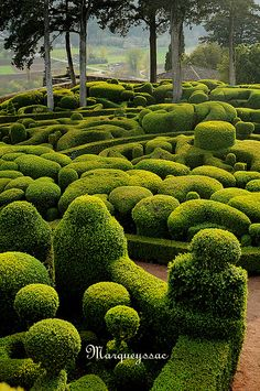 Garden Marqueyssac, Vézac in the Dordogne region of France (not Japanese but I think they got the idea from Japanese gardens)