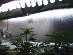 Powerfull CFL Indoor Grow Lights ► Best VEG Growing Lights!