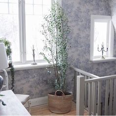 Like a dream  Repost from @snickargladjen who has the wallpaper Toile De Jouy from A Vintage Book at home ✨ Link in bio -> @borastapeter