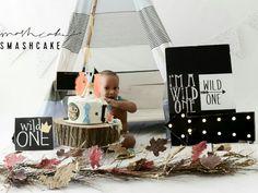 Wild One inspired smash cake shoot (teepee the cutest)