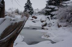 Water Feature, Pond, Winter Landscape, Gardening, Landscape, Landscape Design by Alpine Gardens