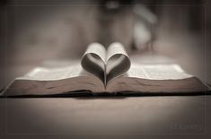 The Bible. God's love letter to me, so  thankful for His promises, guidance and wisdom in these pages. Books To Read, My Books, Novela Historica, Brandon Heath, Shabbat Shalom, Love Letters, Love Book, Bible Images, Bible Pictures
