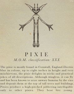 Pixie- Fantastic Beasts and Where to Find Them