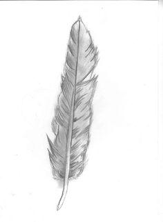 http://th04.deviantart.net/fs70/PRE/i/2013/041/1/5/pencil_feather_by_bringmethepaintbrush-d5ug7t4.jpg