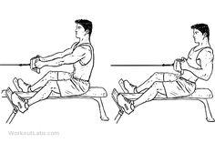 Seated / Low Cable Back Rows