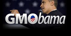 SELLOUT: Obama Betrays Americans Again…with the Monsanto Protection Act - http://SurvivalistDaily.com/obama-signs-the-monsanto-protection-act/