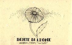 Learning Italian Language ~ Dente di leone        (Dandelion) IFHN