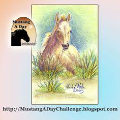 Mustang A Day Personal Challenge of LindaLMartin: Kahlua 2013 Colt of Sand Wash Basn HMA Challenge Image#427