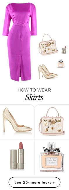 """""""Silked Top With Jumper Pencil Skirt"""" by nanayau on Polyvore featuring Gianvito Rossi, Dolce&Gabbana, Ilia and Christian Dior"""