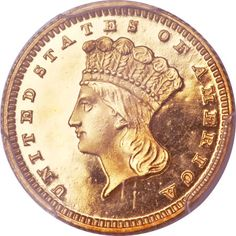 1876 Gold Dollar proof, with a deep cameo. Very nice proof! 45 proofs made that year! Incredible coin.