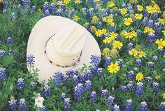 Google Image Result for http://ggfotos.com/wp-content/uploads/2010/07/hat2.jpg