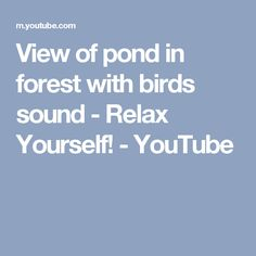 View of pond in forest with birds sound - Relax Yourself! - YouTube
