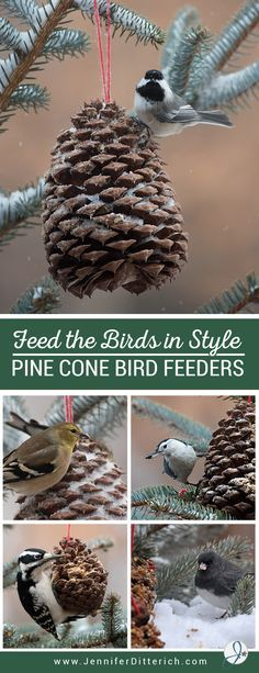 Pine Cone Bird Feeder Tutorial | If you'd like to attract birds to your yard this winter, here's a fun and festive way to do it. Using pine cones, peanut butter, bird seed and a little yarn you can make ornaments that double as bird feeders to decorate your yard and trees this winter.