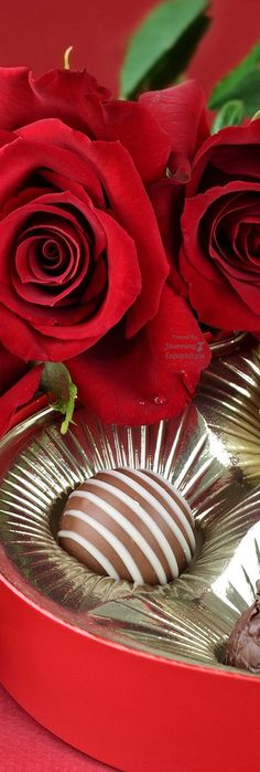 valentine.quenalbertini: Red Roses & Chocolates | Stunning Expressions