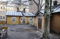Ruiskumestarin talon piharakennus on ollut suljettuna sisäilmaongelmien takia. 1970-luvulla tehdyn remontin lisäksi ongelmia ovat aiheuttaneet talon kyljessä kasvavat puut.