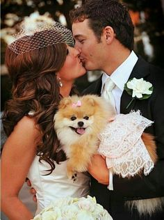 Pomeranian pup with bride and groom! #Adorable #pom #wedding #weddingphotography #bride #groom #kiss #wedding #weddingphotography #bride #cute