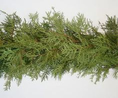how to make cedar garland