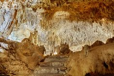 This cave used to be an ancient sanctuary. Centuries ago - the Maya held their rituals here http://aktun-chen.com/cave-item