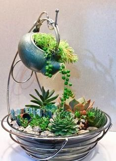 Magical DIY Succulent Fairy Garden Ideas DIY Garden Yard Art When growing your own lawn yard ar Succulent Seeds, Succulent Gardening, Garden Terrarium, Planting Succulents, Container Gardening, Planting Flowers, Terrariums, Cactus Seeds, Organic Gardening