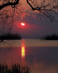 "🌟@suleakt 🌟@wind.whisper en Instagram: ""📸 via ✪ @minsk_sea ♕ Congratulations! Tebrikler! 🌟Selection by ✪ @emre__41 🎈 ➖➖➖➖➖➖➖➖➖➖➖➖➖ #ig_fotografdiyari #ig_myshots…"" Night Photos, Artist Gallery, Beautiful Sunset, Scenery, Shots, World, Places, Outdoor, Instagram"
