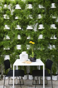 So lush. I imagine it smells wonderful too. by Logica:architettura, italy plant, living walls, green walls, restaurant interiors, patio, outdoor gardens, garden design ideas, restaurants, restaurant interior design