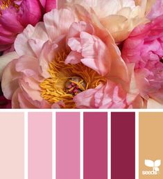 Flora Hues | Design Seeds Scheme Color, Color Palate, Colour Schemes, Color Combos, Color Patterns, Colour Palettes, Design Seeds, World Of Color, Color Of Life