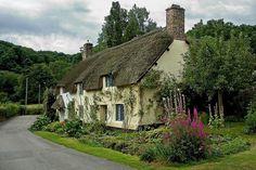 Dunster thatch  By: Chris Spracklen