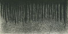 Il Lee - shading with ball point pen to build up this forest of trees. Beautifully abstract