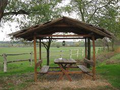 Lipizzans state stud farm; Ivandvor, Slavonija