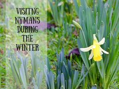 Visiting the National Trust in the Wintertime is there enough to keep a year old entertained?