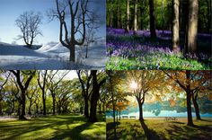 Talvi, kevät, kesä, syksy / Winter, spring, summer, autumn Vaihtuvien valojen tunnelmia / Ilkka Falck