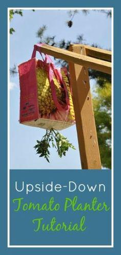 DIY Make Your Own Upside-Down Tomato Planter   Rodale News