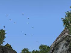 Kinematisch animierte Vögel ab EEP 9.0