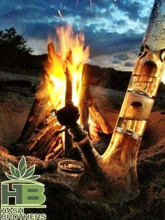 2Day's Answer: Camping! ;-) @Hash_Brothers #games #boardgames #CO #Pot #MJ #MMJ #Trivia #Fun #Marijuana #Weed #Dabs #Stoners #Hash #High #Pipes #Lighters @WeedLifeNetwork #stoned #Stoner #ganja #420 #Chronic #Dope #Dab #Stash #Spliff #OR #WA #AK #DC @EmeraldFieldsCO @IndyRecords @TheHealingCanna @MCCaregivers