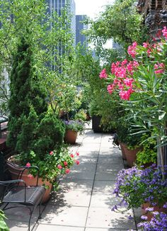 Rooftop garden in New York City • photo: Interior  Foliage Design, Inc.