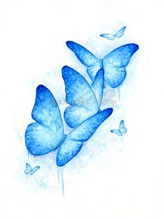 Blue Butterfly Watercolor Insect Painting Silhouette Art Modern Wildlife Wall Art Illustration - Sarah Alden