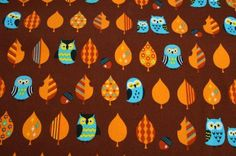 CT25 - Owls on Brown