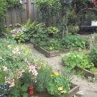 7 Secrets for a High-Yield Vegetable Garden: Organic Gardening